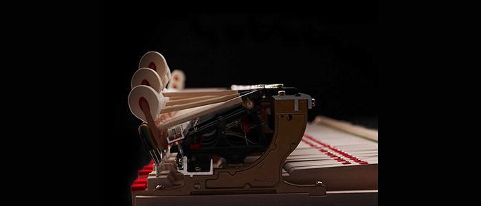 Il pianoforte: conoscere la meccanica per ottimizzare l'esecuzione. Laboratorio a cura di Luciano Del Rio – 22-11-2017
