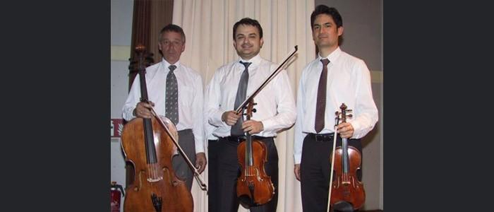 Il violino, la viola, il violoncello. Dall'Orchestra alla Musica da Camera. Masterclass di D. Schultheiss, A. Mustea, Y. Savary – dal 28-11 al 1-12-2017