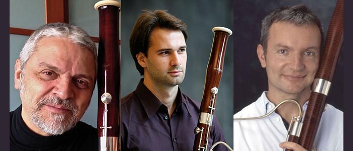 Masterclass di Fagotto a cura di Stefano Canuti, Valentino Zucchiatti e Philipp Tutzer – dal 19-11-2018 all'11-04-2019
